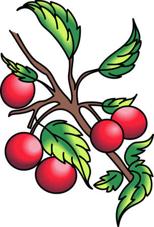 A stem of cherries design is perfect for your kitchen.  Get these designs from Great Notions.