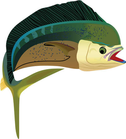 game fishing: Dont forget this cute design when you go fishin.  This design is perfect to take with you when you go.  Everyone will love it!