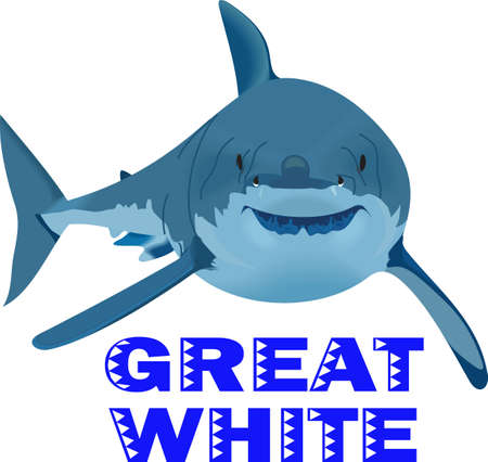 whites: Boys like to read and learn about sharks in the deep blue sea.  Get these designs for his room from Great Notions.