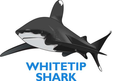 読み、深い青色の海でサメについて学ぶような男の子。 偉大な概念から彼の部屋にこれらのデザインを取得します。