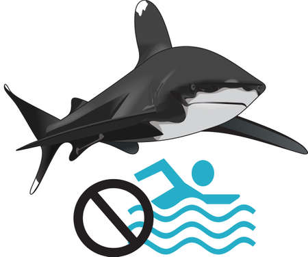 no swimming: Boys like to read and learn about sharks in the deep blue sea.  Get these designs for his room from Great Notions.