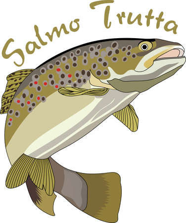 brown trout: Dont forget this cute design when you go fishin.  This design is perfect to take with you when you go.  Everyone will love it!