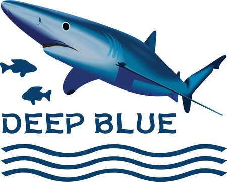 deep blue: Boys like to read and learn about sharks in the deep blue sea.  Get these designs for his room from Great Notions.