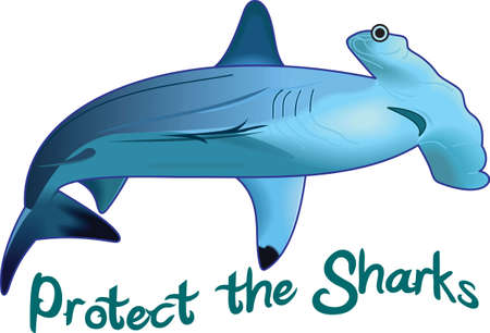 Boys like to read and learn about sharks in the deep blue sea.  Get these designs for his room from Great Notions.