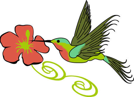 humming: Birds are fascinating animals.  This is a perfect gift for a favorite birder you know.  They will love it!