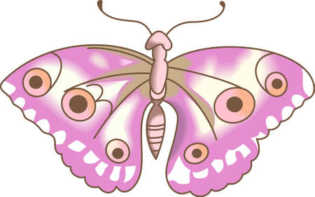 mariposa: This beautiful moth in pink is perfect for your springtime design showing that nature is forever changing and evolving.  Another cute image from Great Notions.