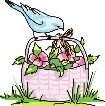bluebird: Birds are fascinating animals.  This is a perfect gift for a favorite birder you know.  They will love it!