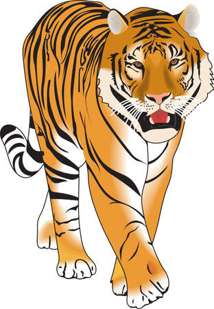 feline: Time to cheer for the team with this  Tiger mascot design.  A perfect design for all the fans from Great Notions.