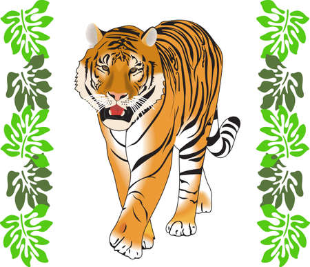 bengal cat: Time to cheer for the team with this  Tiger mascot design.  A perfect design for all the fans from Great Notions.