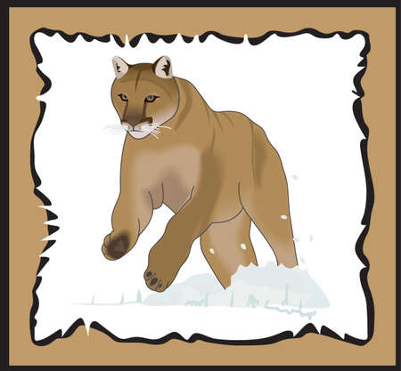 mountain lions: Time to cheer for the team with this Cougar mascot design.  A perfect design for all the fans from Great Notions. Illustration