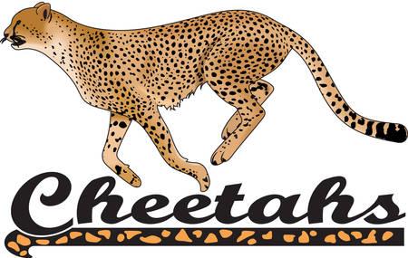 Le temps de remonter le moral de l'équipe avec cette conception de la mascotte Cheetah. Une conception parfaite pour tous les fans de Great Mercerie. Banque d'images - 45056962