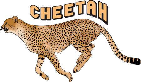 Le temps de remonter le moral de l'équipe avec cette conception de la mascotte Cheetah. Une conception parfaite pour tous les fans de Great Mercerie. Banque d'images - 45056970