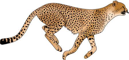 Le temps de remonter le moral de l'équipe avec cette conception de la mascotte Cheetah. Une conception parfaite pour tous les fans de Great Mercerie. Banque d'images - 45056971