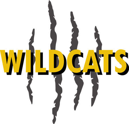 mountain lion: Show your team spirit with this wildcats logo.  Everyone will love it!