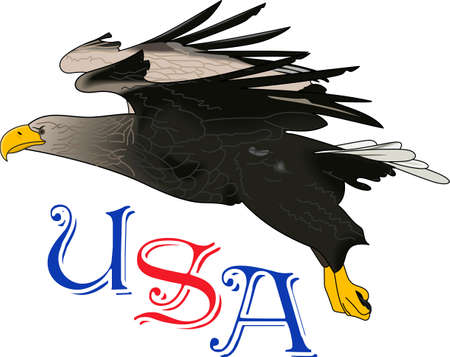 raptorial: Let them know you are proud of your hero.  Show support for our troops with this special design. Illustration