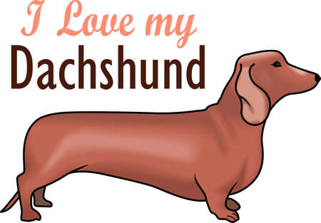 hot dog: My best friend is hard at work for me.  Show everyone how much your dog means to you.  They will love it! Illustration