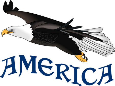 raptorial: Celebrate our freedom on July 4th with this eagle!  Perfect on items for family and friends to celebrate this day.  They will love it! Illustration