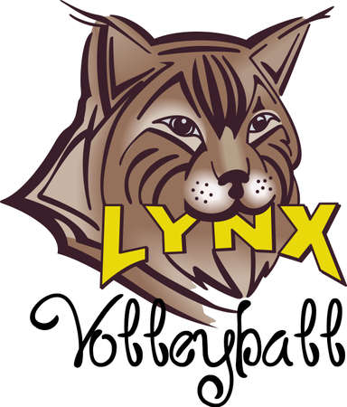 wildcat: Show your team spirit with this Lynx logo.  Everyone will love it!