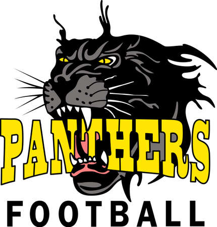 Show your team spirit with this Panthers logo.  Everyone will love it!