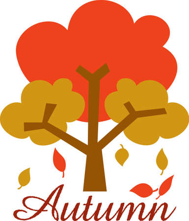 all seasons: Decorate your classroom to represent all four seasons.  These trees will be perfect!  Your students will love it!