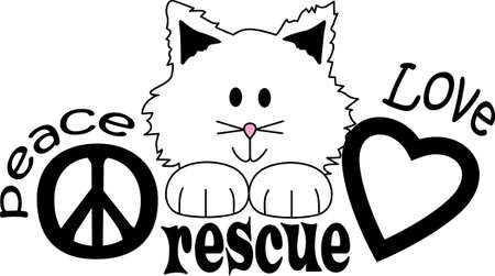 animal shelter: Give the cat lover in your family a funny gift. They will love it!