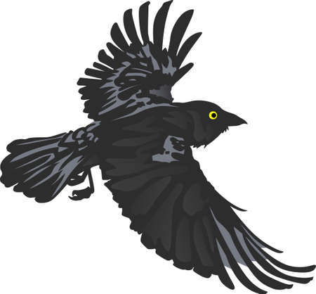 blackbird: Birds are fascinating animals.  This is a perfect gift for a favorite birder you know.  They will love it!