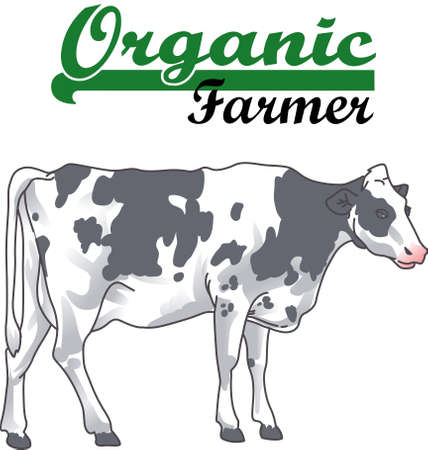 holstein: A rancher would love this image of a cow.  Add this design to a shirt with their brand on it.