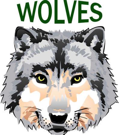 늑대의 힘은 팩이고 팩의 힘은 늑대입니다.