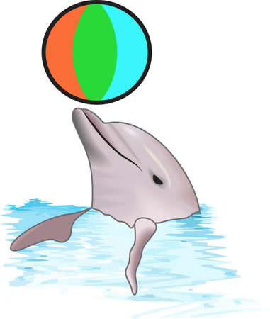 beachball: Send this cute dolphin to a child or child at heart.  They will love it! Illustration