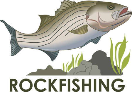 freshwater fishing: Dont forget this cute design when you go fishin.  This design is perfect to take with you when you go.  Everyone will love it!