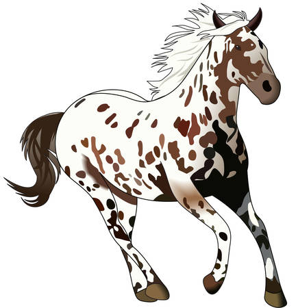 This graceful horse with the wind blowing its mane will be beautiful on a shirt, vest or jacket.  일러스트