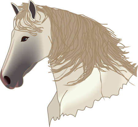 This graceful horse with the wind blowing its mane will be beautiful on a shirt, vest or jacket.   Ilustracja