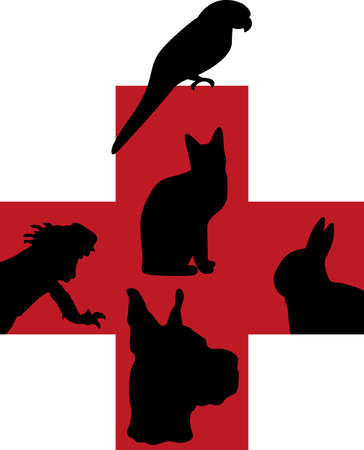 notions: A veterinarian and their assistants love and care for animals.  This is a perfect design to thank them from Great Notions.