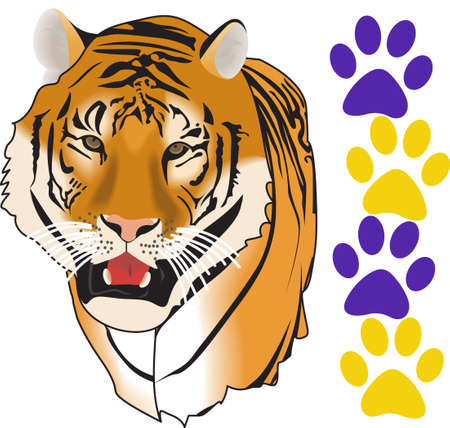 bengal cat: Show your team spirit with this Tigers logo.  Everyone will love it. Illustration