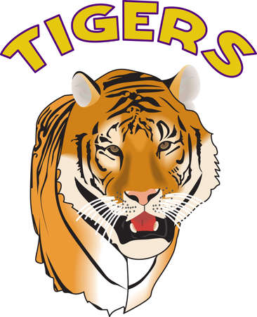 siberian tiger: Show your team spirit with this Tigers logo.  Everyone will love it. Illustration