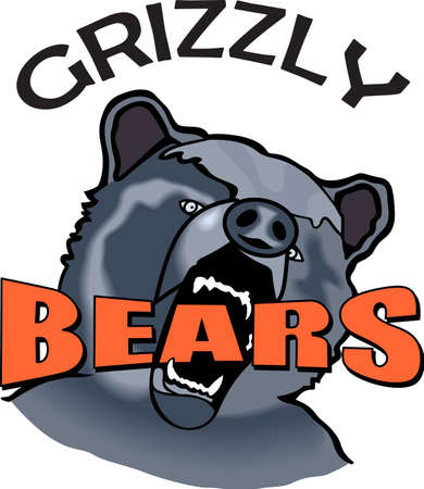 Show your team spirit with this Bears logo.  Everyone will love it.