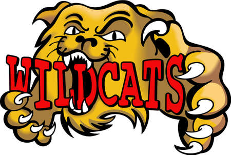 team spirit: Show your team spirit with this Wildcats logo.  Everyone will love it. Illustration
