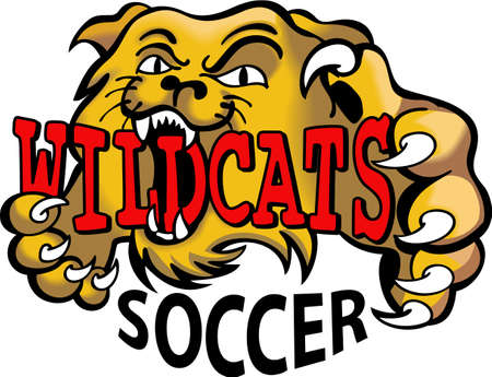 mountain lions: Show your team spirit with this Wildcats logo.  Everyone will love it. Illustration