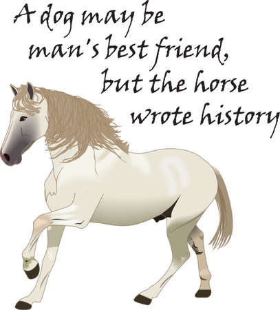 filly: This graceful horse with the wind blowing its mane will be beautiful on a shirt, vest or jacket.  Illustration