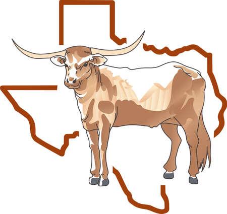 Texas Longhorn Steer Cattle Stock Vector Illustration And Royalty Free Texas Longhorn Steer Cattle Clipart