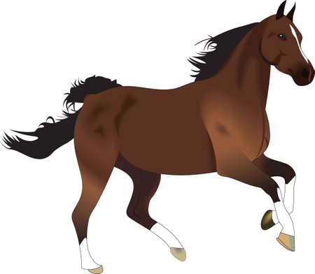 side viewing: This graceful horse with the wind blowing its mane will be beautiful on a shirt, vest or jacket
