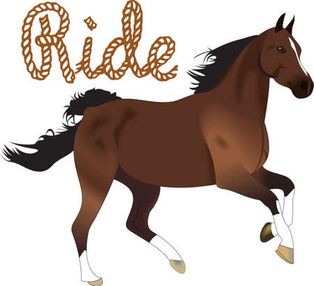 side viewing: This graceful horse with the wind blowing its mane will be beautiful on a shirt, vest or jacket.  Illustration