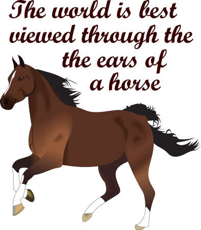 proverbs: This graceful horse with the wind blowing its mane will be beautiful on a shirt, vest or jacket.  Illustration