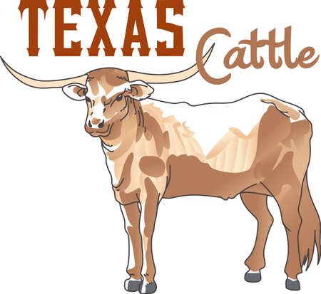 longhorn: The Texas Longhorn Steer is the perfect mascot for your team.