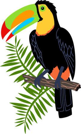 Denken Sie daran, die Reise nach Costa Rica mit dieser schönen Tukan. Standard-Bild - 45097549