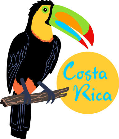 Remember the trip to Costa Rica with this beautiful toucan.    向量圖像