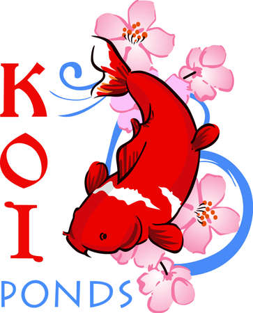 expectations: The koi is a symbol of a persons ability to have high expectations and for happiness.
