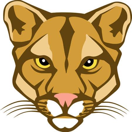 Toon uw teamgeest met dit Cougar. Iedereen zal het geweldig vinden! Stock Illustratie