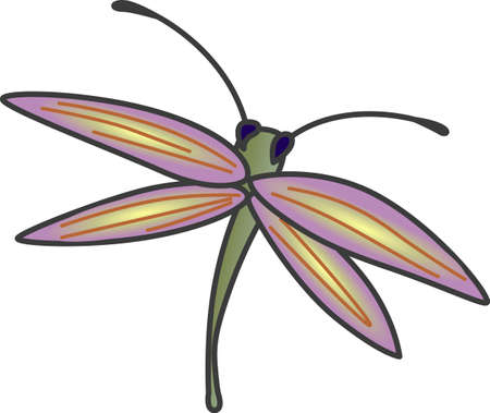 This beautiful dragonfly shows a springtime design.