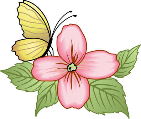 springtime: This beautiful butterfly shows a springtime design.